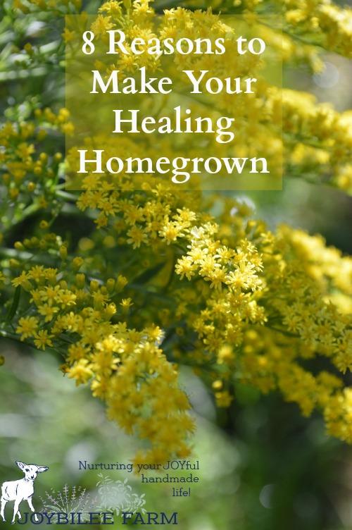 medicinal herbs to grow -