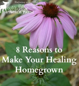 8 Reasons to Make Your Healing Homegrown