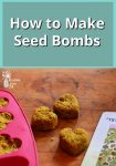 Seed bombs on a wooden background by a seed packet