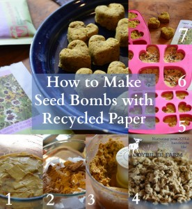 How to make seed bombs with recycled paper