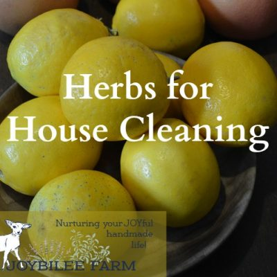 Herbs for House Cleaning