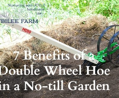 7 Benefits of a Double Wheel Hoe in a No-till Garden