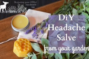 Peppermint and Lavender Headache Salve from your garden