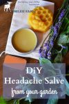 Headache salve in a tin, beeswax, lavender blossoms and peppermint on a table