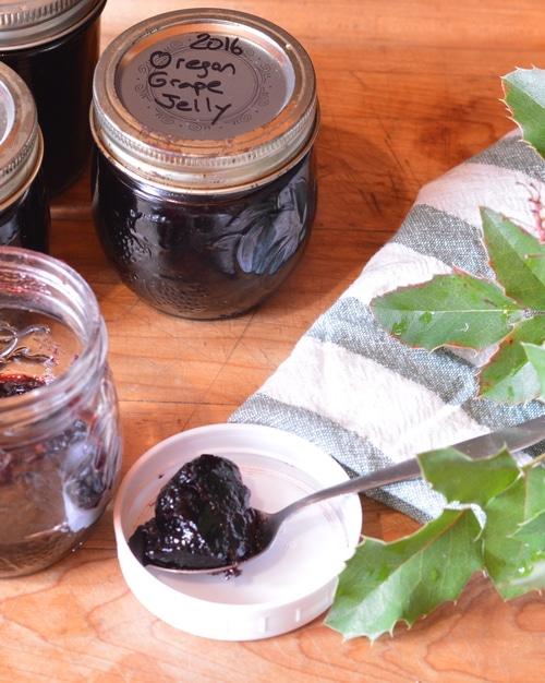 homemade oregon grape jelly