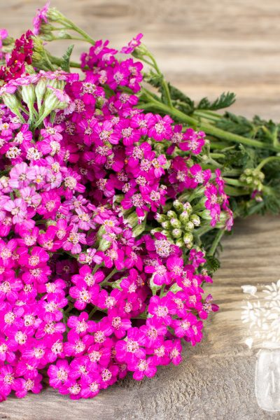 bundled pink yarrow flowers on a wooden table
