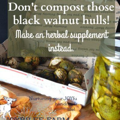 Don't Compost Those Black Walnut Hulls! Make a Black Walnut Tincture Instead