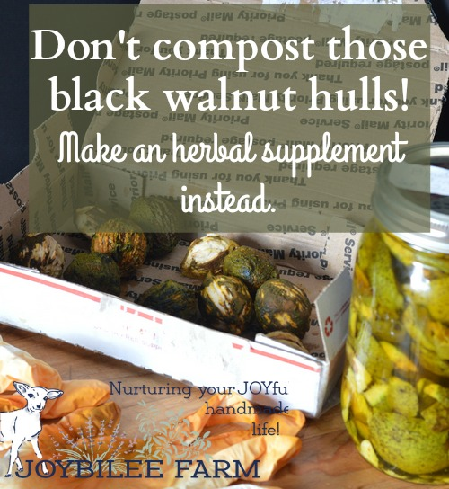 Make black walnut tincture with the green hulls from black walnuts for its antifungal properties or as an external iodine supplement.