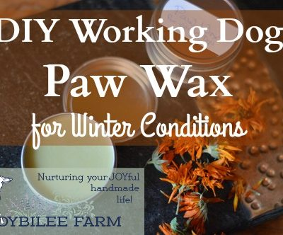 DIY Working Dog Paw Wax for Winter Conditions