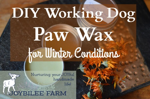 paw-wax-for-working-dogs-horizontal