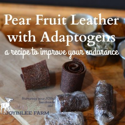 Pear Fruit Leather with Adaptogens