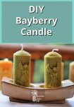 Bayberry Candle