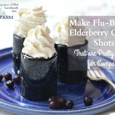 Make Flu-Busting Elderberry Gelatin Shots That are Pretty Enough for Company