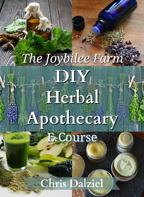 Enroll in the DIY Herbal Apothecary Ecourse now.