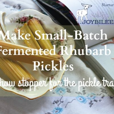 Make Small Batch Fermented Rhubarb Pickles, a Show Stopper on the Pickle Tray