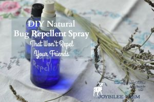 DIY Natural Bug Repellent Spray That Won't Repel Your Friends