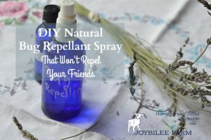 DIY Natural Bug Repellant Spray That Won't Repel Your Friends