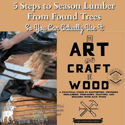 5 Steps to Season Lumber From Found Trees so You Can Make Something Beautiful