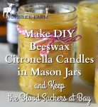 Make DIY Beeswax Citronella Candles in Mason Jars and Keep the Blood Suckers at Bay