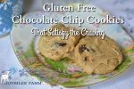 Gluten Free Chocolate Chip Cookies That Satisfy the Craving