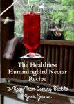Hummingbirds at a red hummingbird feeder