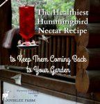 The Healthiest Hummingbird Nectar Recipe