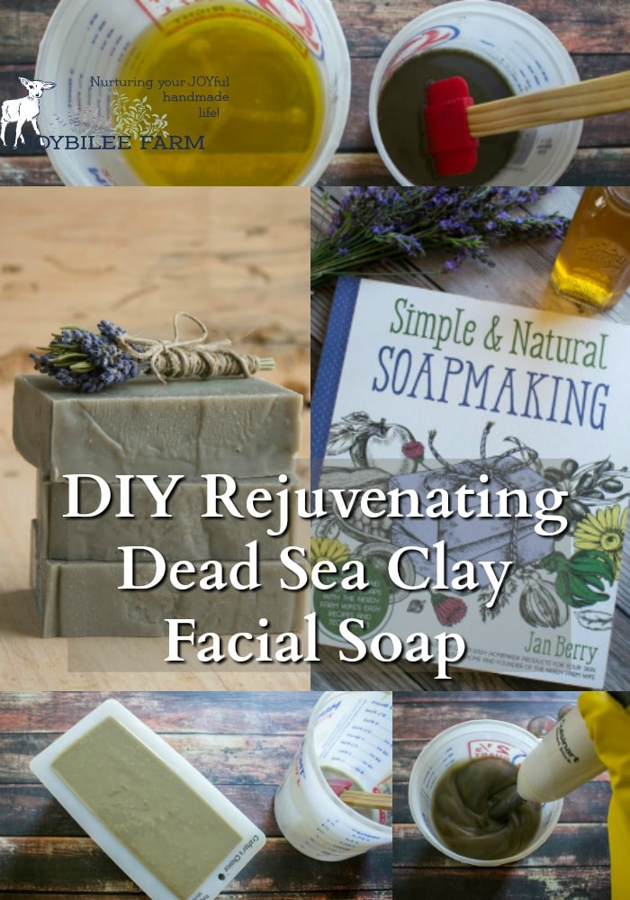 Dead Sea clay facial soap is easy to make with these natural soapmaking techniques found in Jan Berry's newest book, Simple and Natural Soapmaking