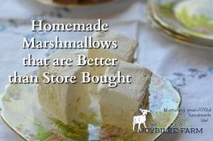 Homemade Marshmallows That Are Better than Store Bought