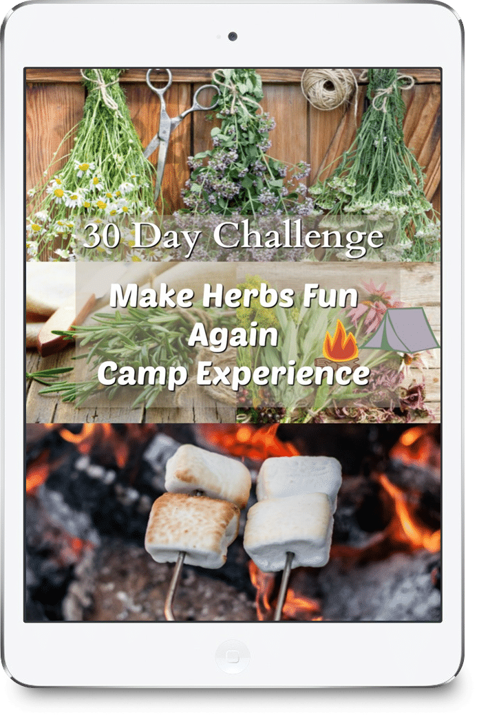 Make Herbs Fun Again 30 day challenge