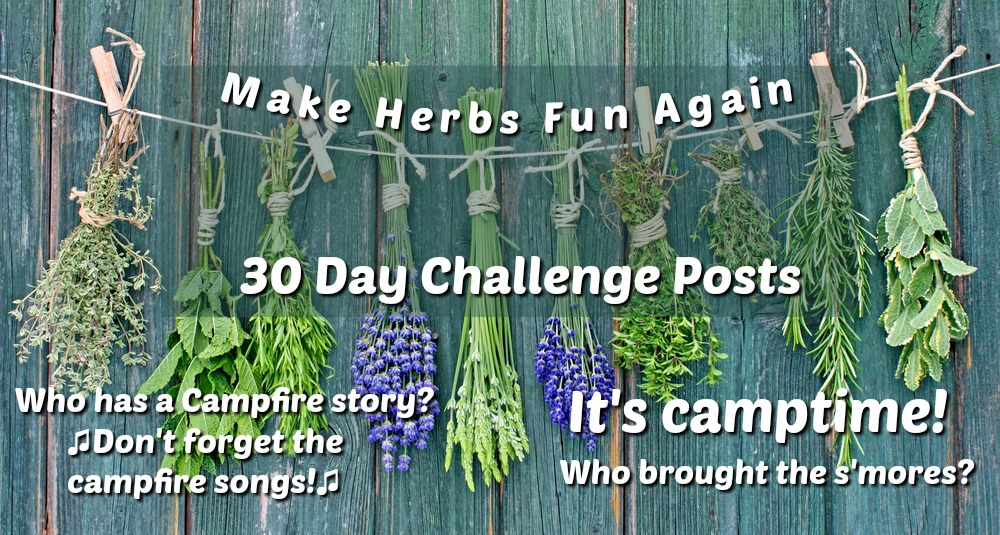 Make Herbs Fun Again at Herb Summer Camp -Reconnect with your passion