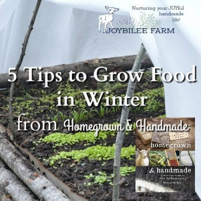5 Tips to Grow Food in Winter, Even If You Live in Zone 4