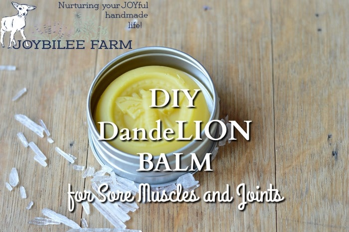 dandelion balm in a metal tin with text overpay - DIY dandelion balm for sore muscles and joints