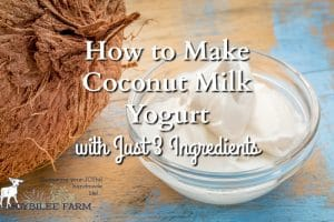 Coconut milk yogurt is a viable alternative yogurt made suitable for dairy-free, gluten-free, paleo, and GAPS special diets. It's easy to make at home with just 3 ingredients.
