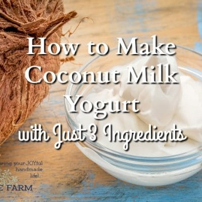 How to Make Coconut Milk Yogurt with Just 3 Ingredients