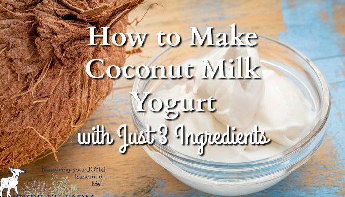 How to Make Coconut Milk Yogurt with Just 3 Ingredients