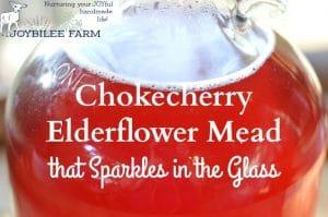 Chokecherry Elderflower Mead Recipe that Sparkles in the Glass