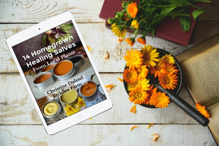 14 Homegrown Healing Salves from Local Plants ebook