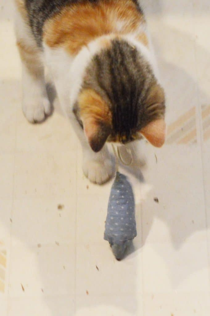 DIY Cat Toys, like this catnip toy mouse for kittens and indoor cats, are easy and quick to make at home with fabric scraps, quilting fabric precuts, and dried catnip from your garden. Cats love these cat toys, too.