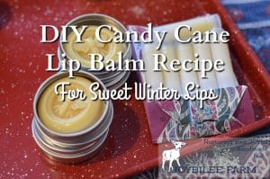 DIY Candy Cane Lip Balm Recipe
