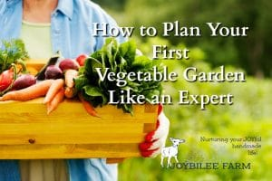 How to Plan Your First Vegetable Garden Like an Expert
