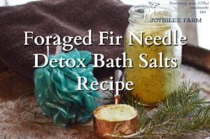 Foraged Fir Needle Detox Bath Salts Recipe to Help You Feel Better Faster