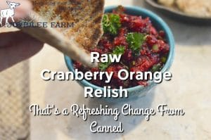 Raw Cranberry Orange Relish That's a Refreshing Change From Canned