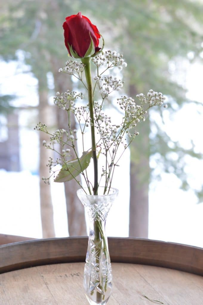 Single red rose in a crystal bud vase