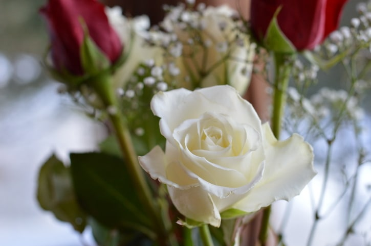 Create 4 Diy Floral Arrangements From A Single Rose Bouquet