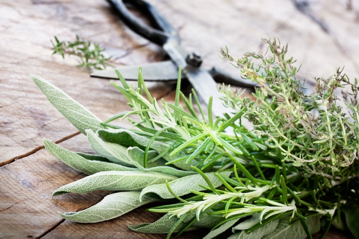 Freshly cut sage and rosemary