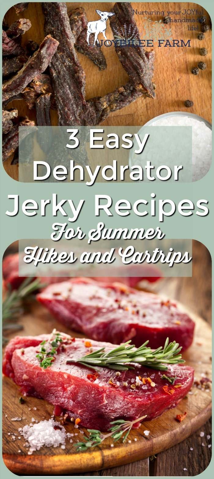 3 Easy Dehydrator Jerky Recipes for Summer Hikes and Car Trips