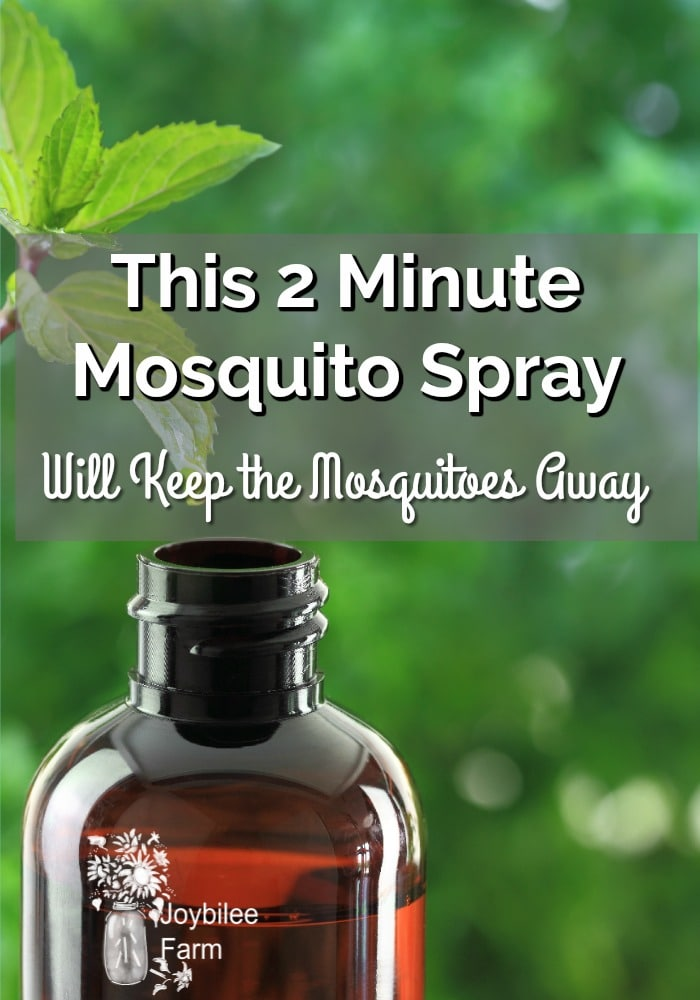 This 2 Minute Mosquito Spray Will Keep The Mosquitoes Away