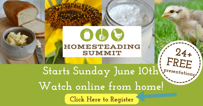 Homesteading  Summit
