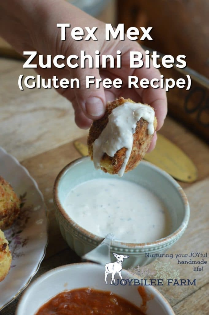 Zucchini bites with ranch dressing.