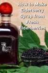 A bottle with elderberry syrup and a small glass bowl with fresh elderberries